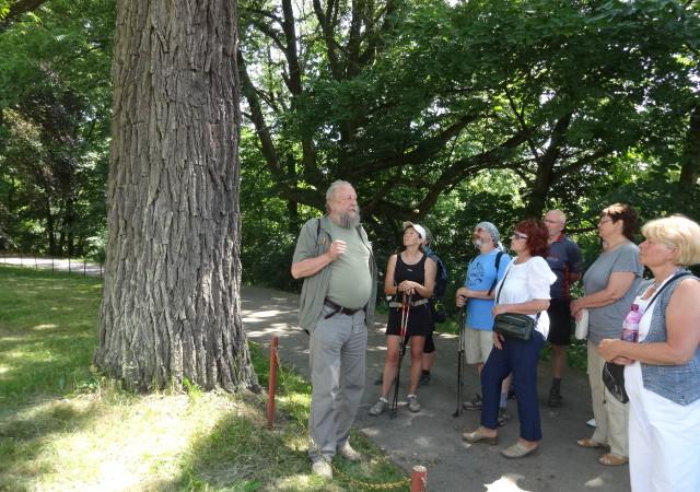 Víkend otevřených zahrad v Lomnici u Tišnova