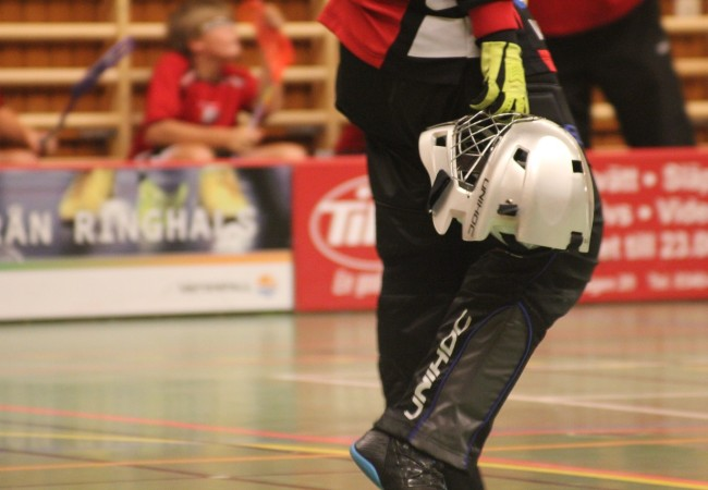 StyleSport TFL (Tišnovská florbalová liga)