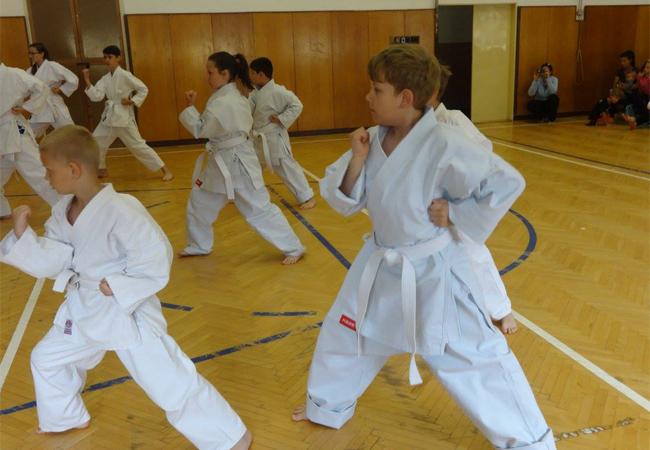 Cvičení TJ Sokol Tišnov ve školním roce 2018 – 2019