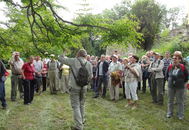 Víkend otevřených zahrad vLomnici je úspěšně za námi