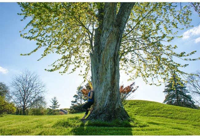 Den stromů, tentokrát za deblínskými velikány