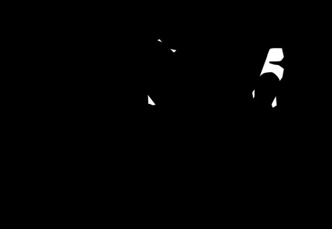 Kroužek miniházené v Tišnově