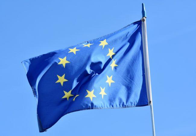 Jak jsme volili doEvropského parlamentu 2004
