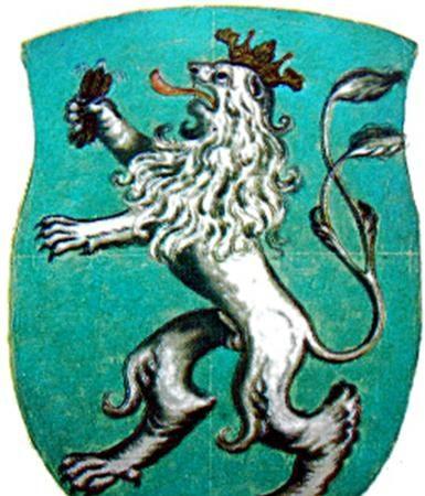 Tišnovský znak, jeho historie avývoj