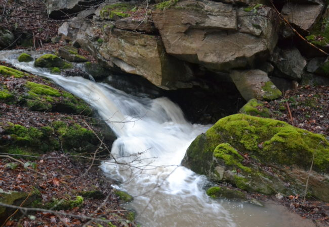 Ujarních potoků – Studánky a vodopády Tišnovska