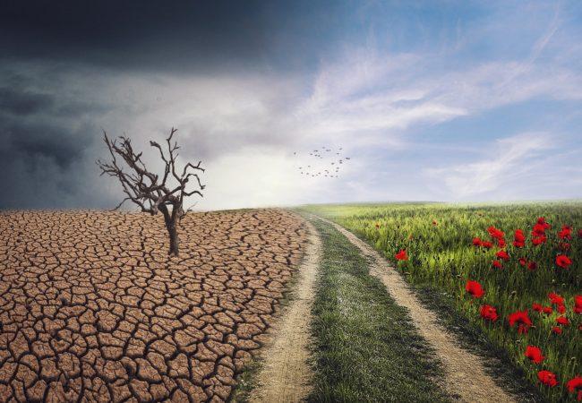 Místní strategie adaptace nazměnu klimatu amitigační opatření města Tišnova